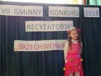 View the album BRZECHWOWANIE 2018- VII GMINNY KONKURS RECYTATORSKI